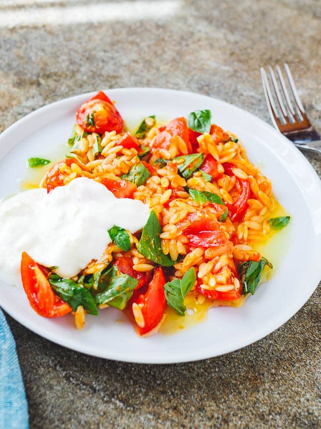 Tomato orzo pasta on white plate, seen from eye level